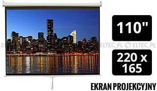 WYPRZEDAŻ - Ekran projekcyjny 220x165cm 4:3 manualny, ścienny-sufitowy